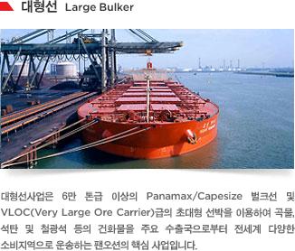 대형선사업은 6만 톤급 이상의 Panamax/Capesize 벌크선 및 VLOC(Very Large Ore Carrier)급의 초대형 선박을 이용하여 곡물, 석탄 및 철광석 등의 건화물을 주요 수출국으로부터 전세계 다양한 소비지역으로 운송하는 팬오션의 핵심 사업입니다.